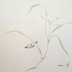 Maozho Untitled Butterfly