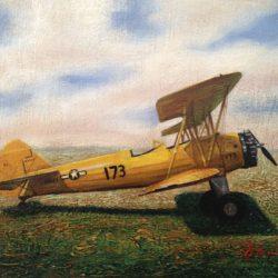 Pedro Tapia Avion Biplano Amarillo
