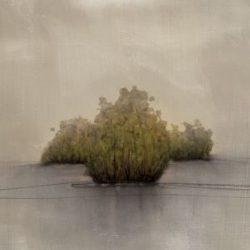 Vincent George